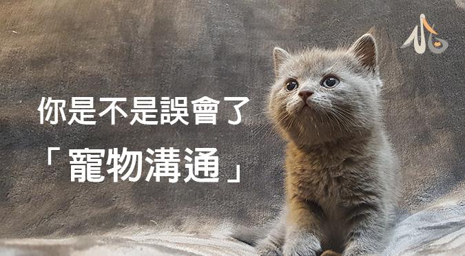 【小白知識】你是不是誤會了「寵物溝通」