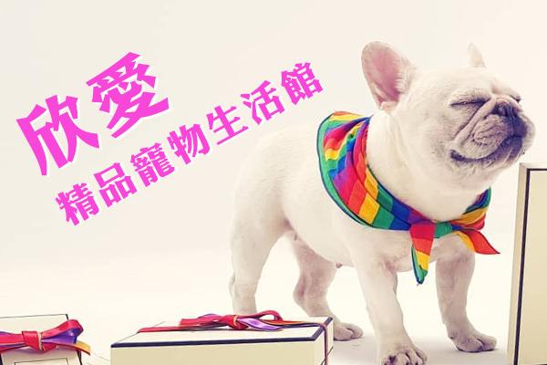 嚴選合法寵物店-欣愛精品寵物生活館