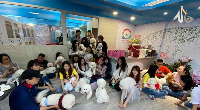 熊友歡聚板橋 甜甜寶貝樂園 寵物旅館開幕