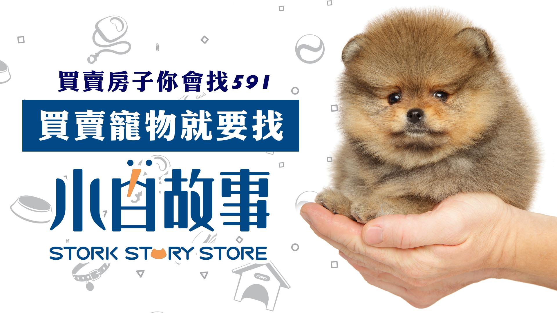 買賣寵物找小白故事
